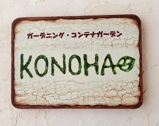 KONOHA_20150905005922419.jpg