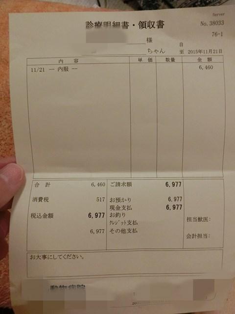 b-CIMG2356.jpg