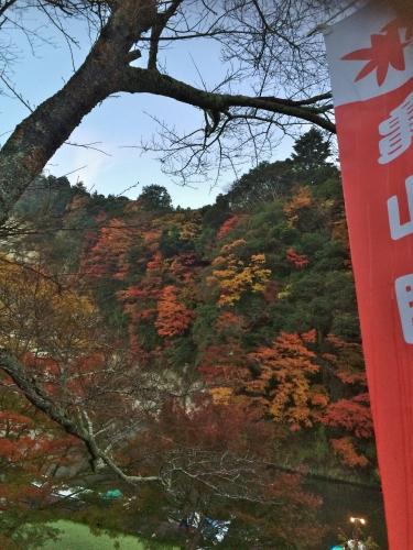 2015-12-06折木沢紅葉