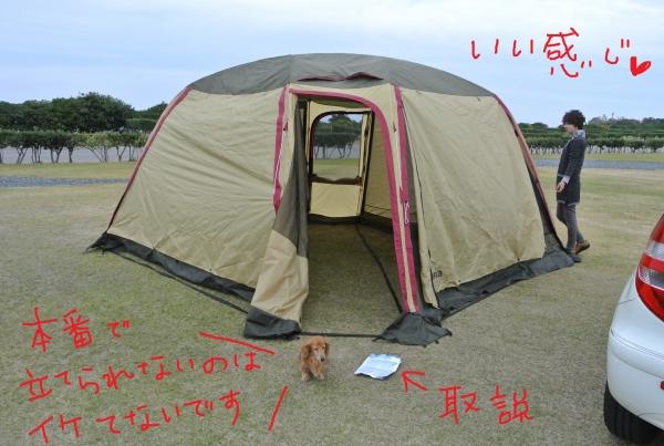DSC_1339.jpg