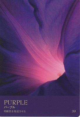カラーカード:パープル