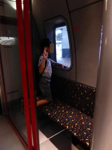 宮崎〜熊本、観光列車の旅〜2015夏−009