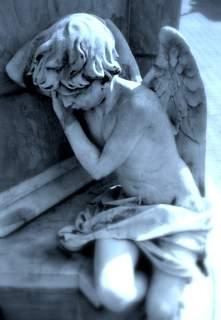baby angel1-002