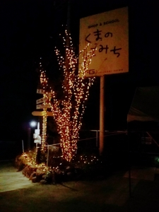 15-11-28-20-11-09-354_deco.jpg