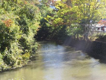 武田神社のお堀