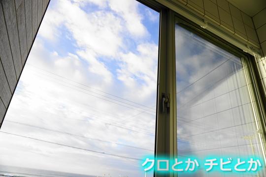 540px20151126_etc-01.jpg