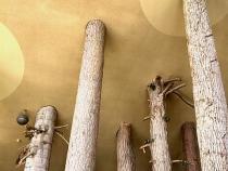 つべつ木材工芸館