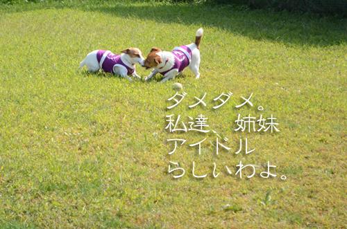 2015-10-04-腕白-006