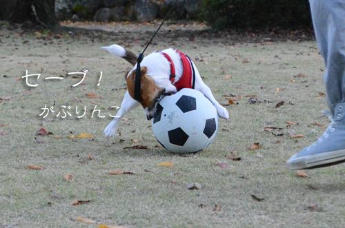 2015-11-15-サッカー-019