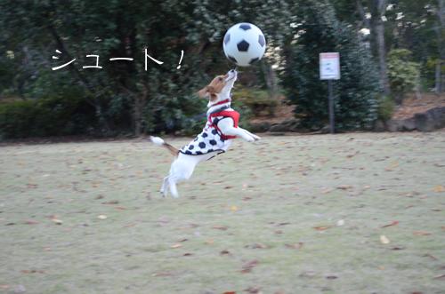 2015-11-15-サッカー-009