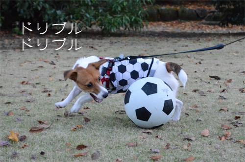 2015-11-15-サッカー-048