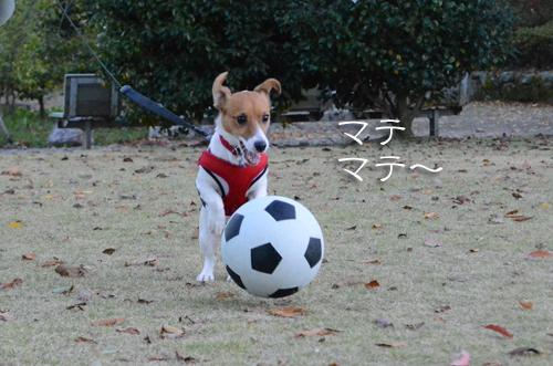 2015-11-15-サッカー-027