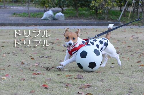 2015-11-15-サッカー-026