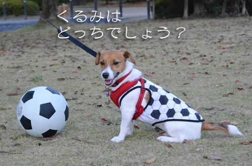 2015-11-15-サッカー-017