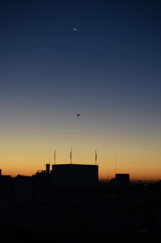 2015-12-09-朝日-001