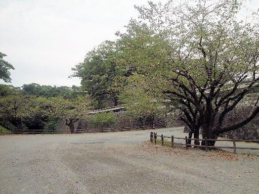 熊本城(5)