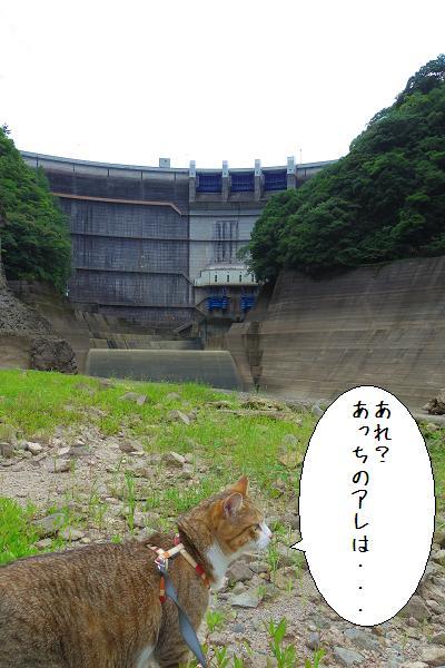 下筌ダム15