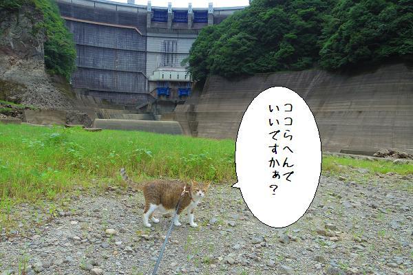 下筌ダム13