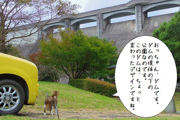 行入ダム1