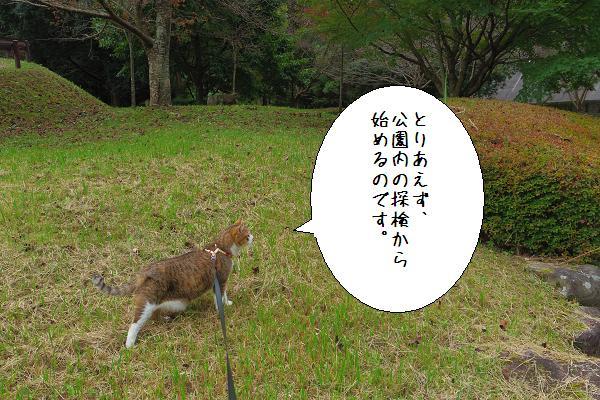 行入ダム2