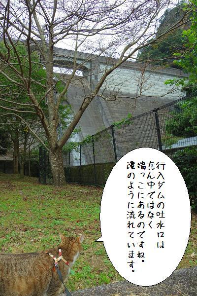 行入ダム6