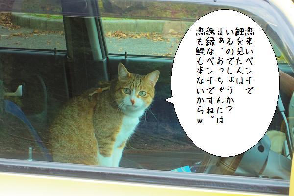 行入ダム13