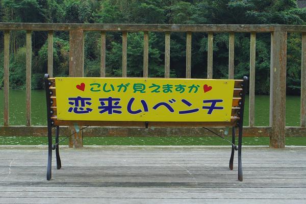 行入ダム11