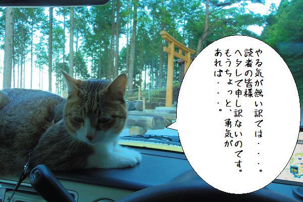 小鳥塚公園8