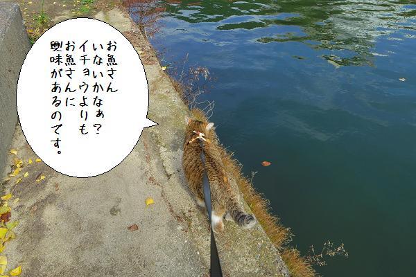 與止日女神社7