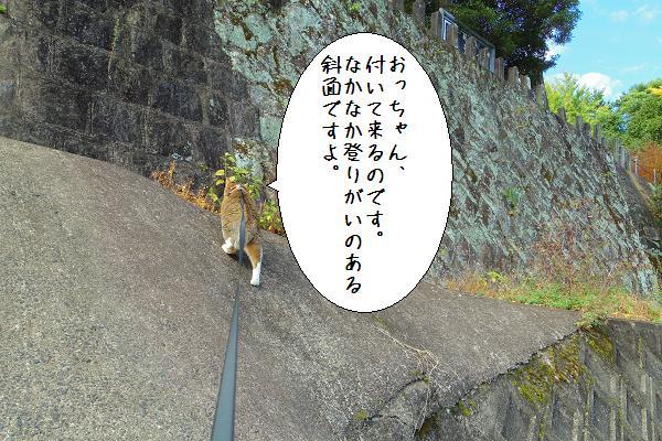 與止日女神社9