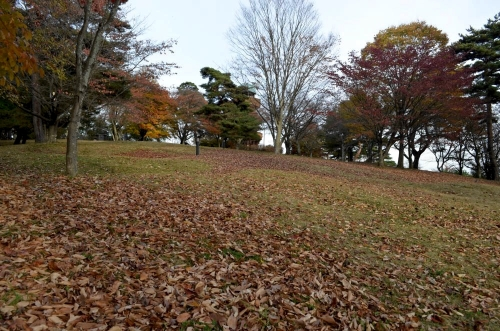 11012015keshibozu02.jpg