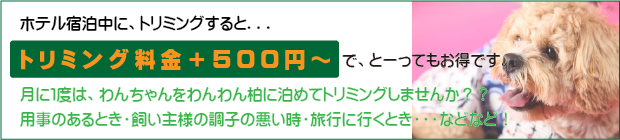 2401-001.png