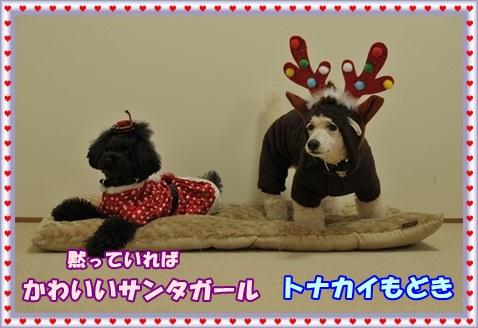 2014.12クリスマス仮装