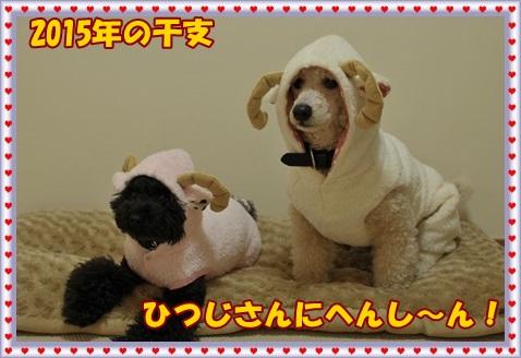 2015.01羊着ぐるみ