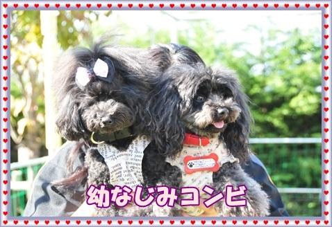 2015.05幼なじみー図