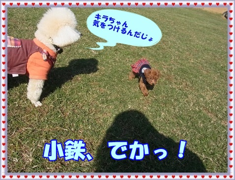 2015.11北総きらちゃん小鉄