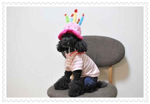 誕生日帽子とパーカー前