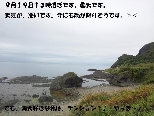 144-14579-0-36890.jpg