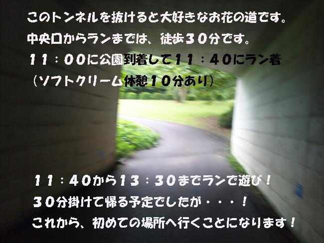 164-15789-3567890-3689.jpg