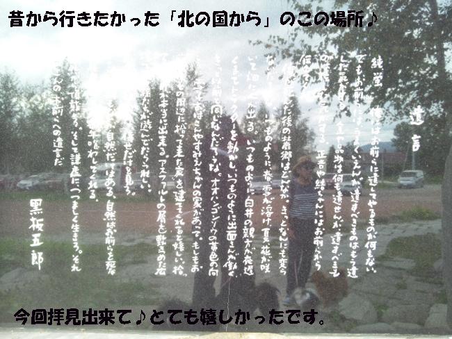 174-156890-46890-3700.jpg