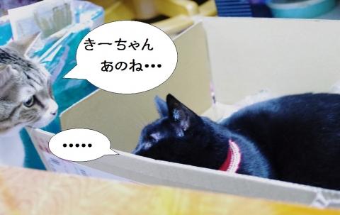 ささっちゃん部長&きなっちゃん社長
