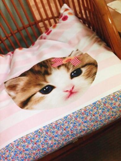 猫柄座布団