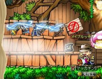 Maple13327a.jpg