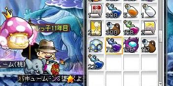 Maple13386a.jpg