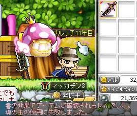 Maple13405a.jpg