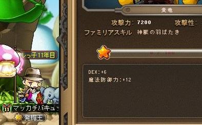 Maple13422a.jpg
