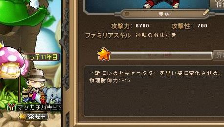 Maple13423a.jpg