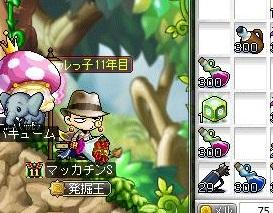 Maple13463a.jpg