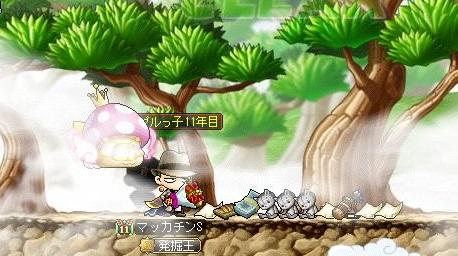 Maple13483a.jpg