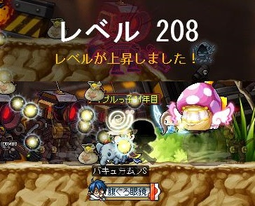 Maple13518a.jpg